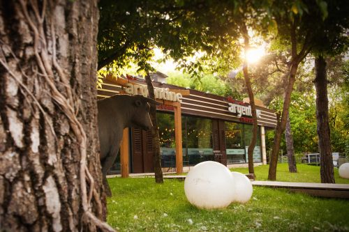 Cătălin Petrescu e un mare chef!     Bucătărie japoneză fusion la restaurantul Argentine din Parcul Herăstrău